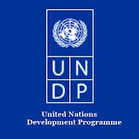 UNDP ingilice turkce acilimi nedir
