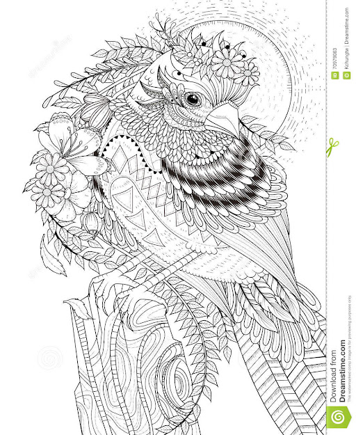 Beautiful Sparrow Adult Coloring Page Stock Illustration Image Throughout  Brilliant Turtle Coloring Pages