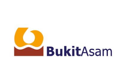 Lowongan Kerja PT Bukit Asam (PTBA) 2019