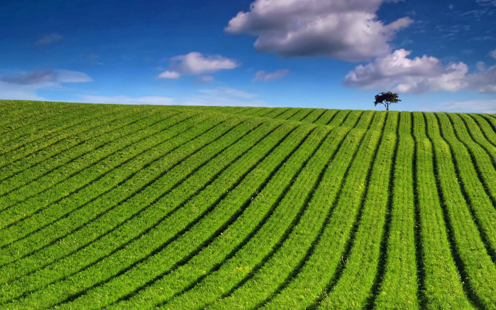 Windows 7 Wallpapers Landscapes