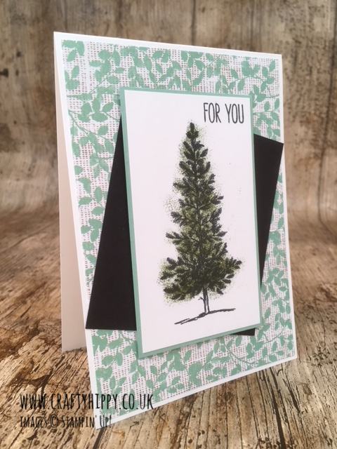 This picture shows a handmade greetings card with the sentiment 'For You' and a tree and was made with the Lovely As A Tree stamp set by Stampin' Up! and Mossy Meadow ink, also from Stampin' Up!