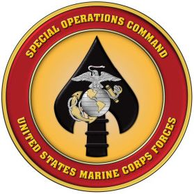 Special Forces Association Chapter IX: 10 years of MARSOC