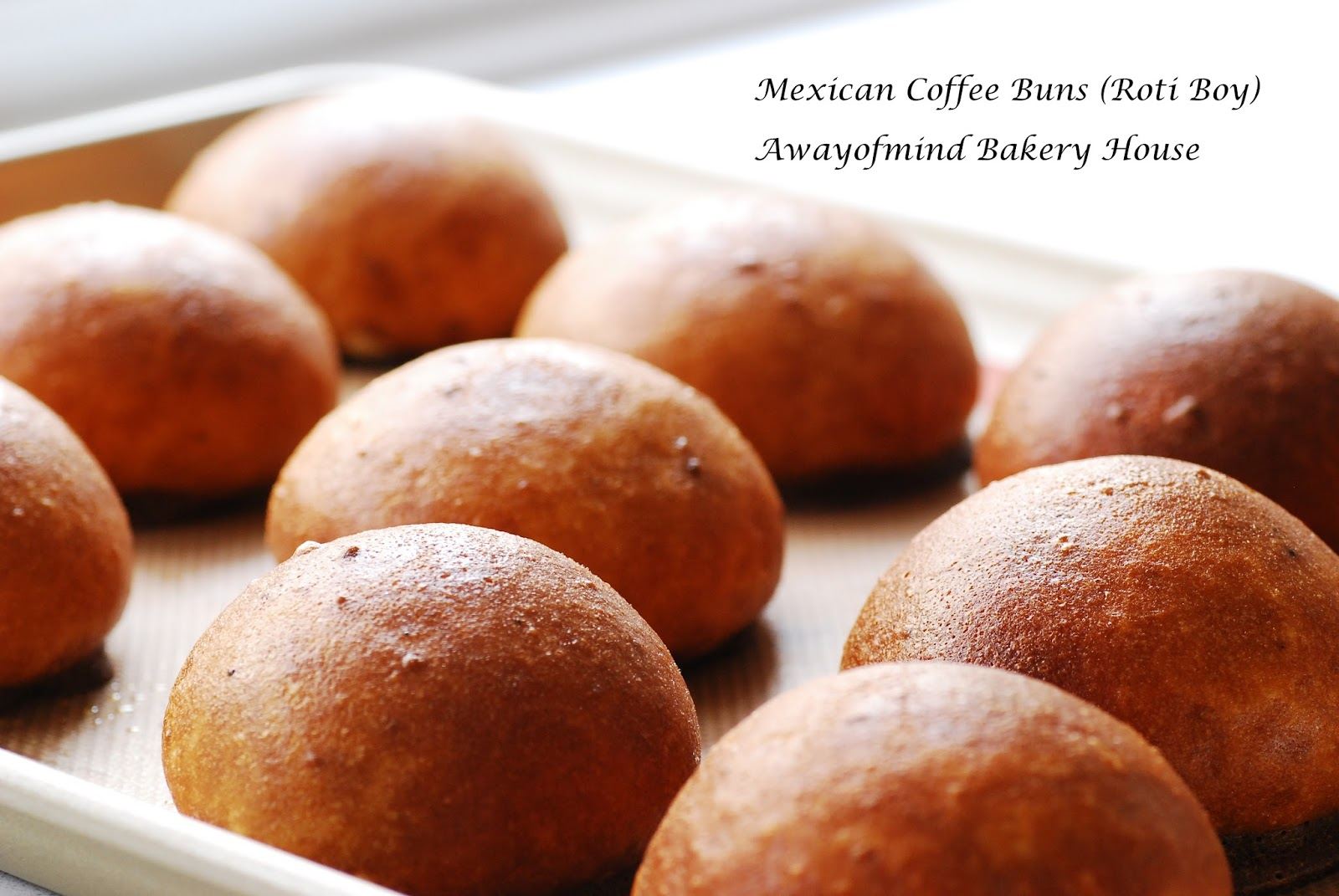 Awayofmind Bakery House: Mexican Coffee Buns (Roti Boy ...