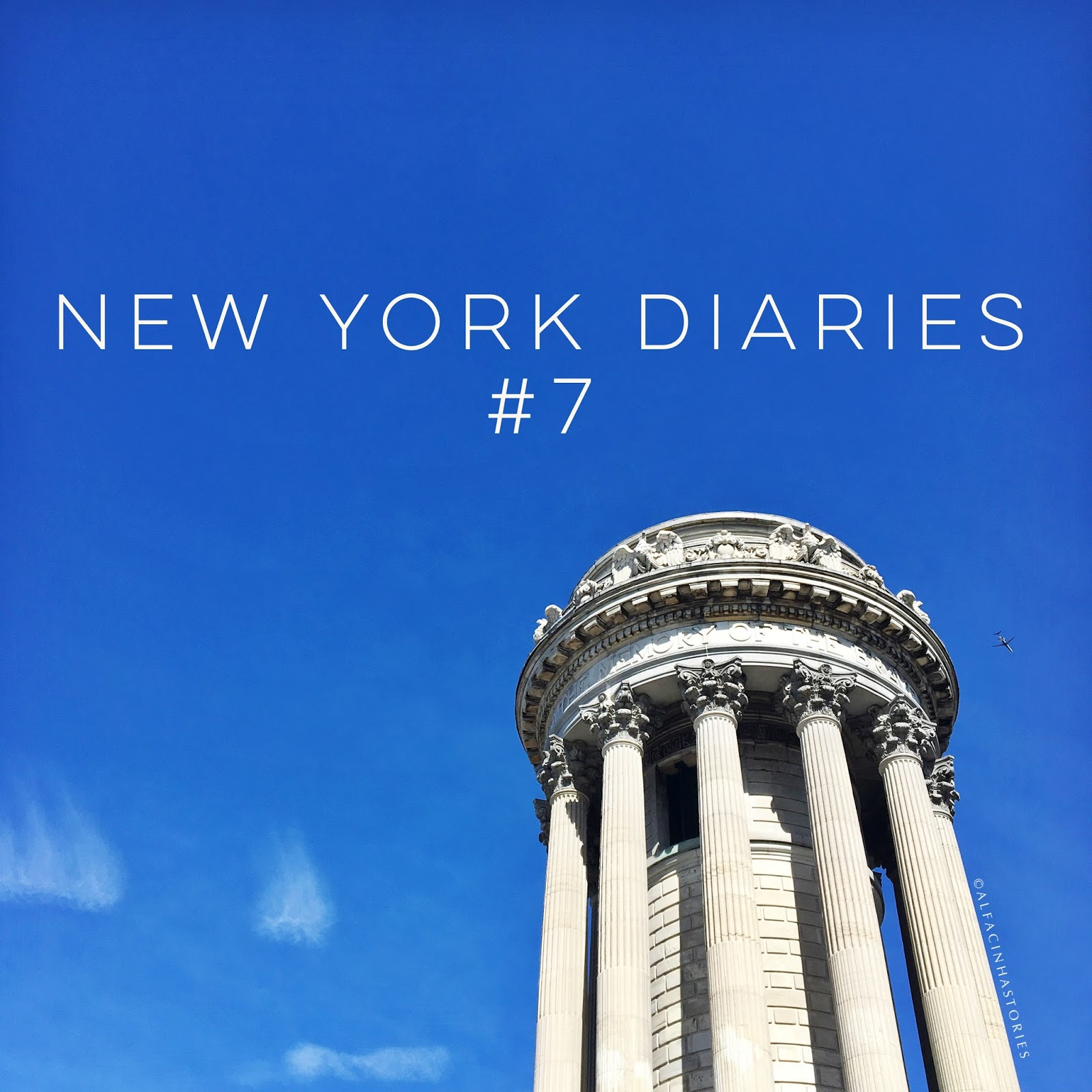 The New York Diaries #7