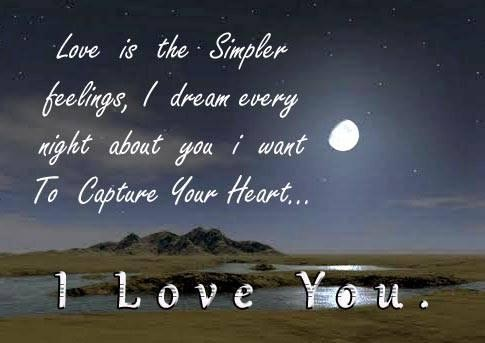 i love you romantic good night wishes quotes