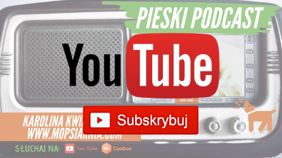 Subskrybuj Mopsiarnię na You Tube!
