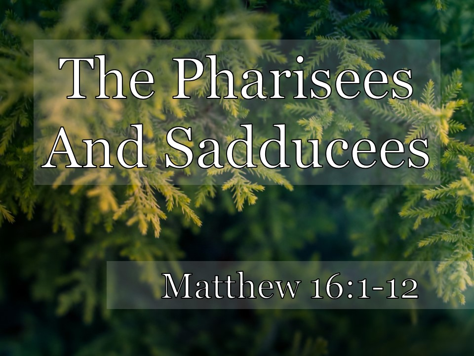 "Matt's Messages] ""The Pharisees and Sadducees"" ~ Matt"