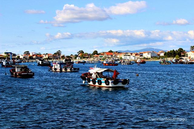 barcas-ogrove-ruta-xacobea-del-mar-de-arousa