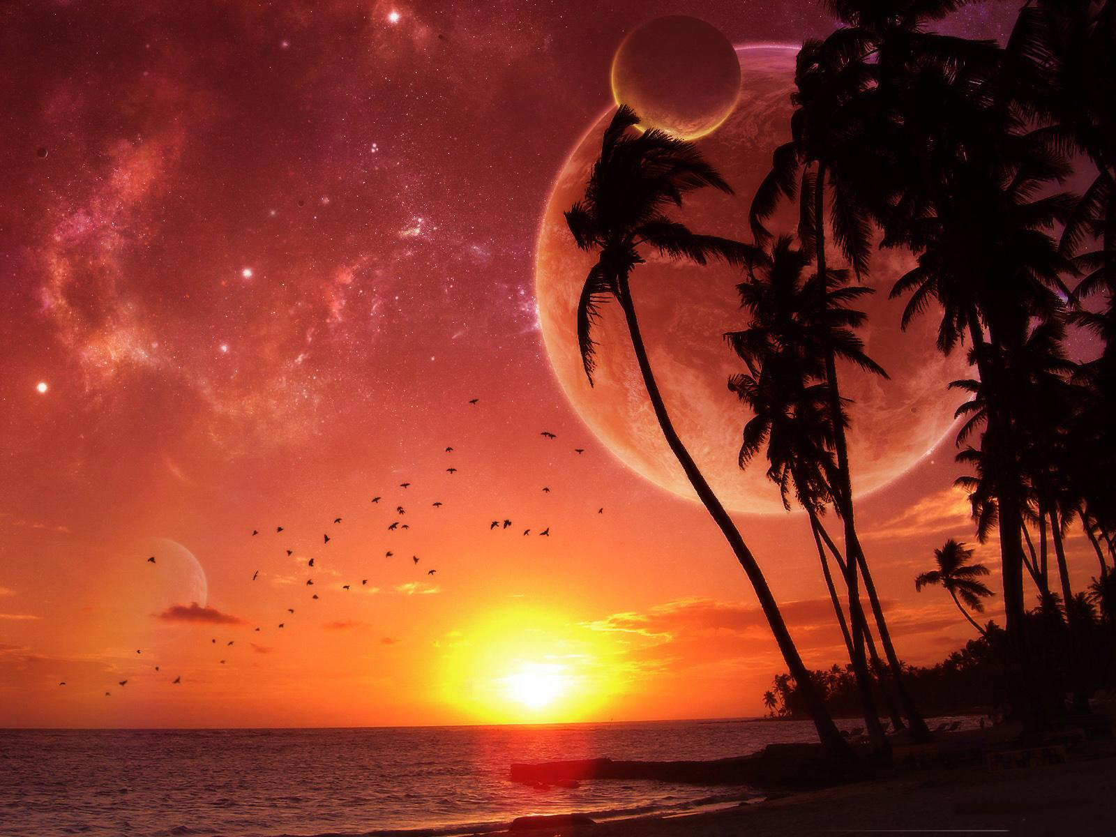 nature sunrise new xp wallpapers windows7windows8 xp7 pc them mobile themes pc background walls ...