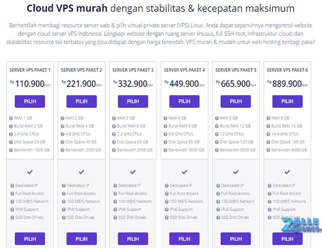 Domain dan Hosting Murah Performa Tetap Handal