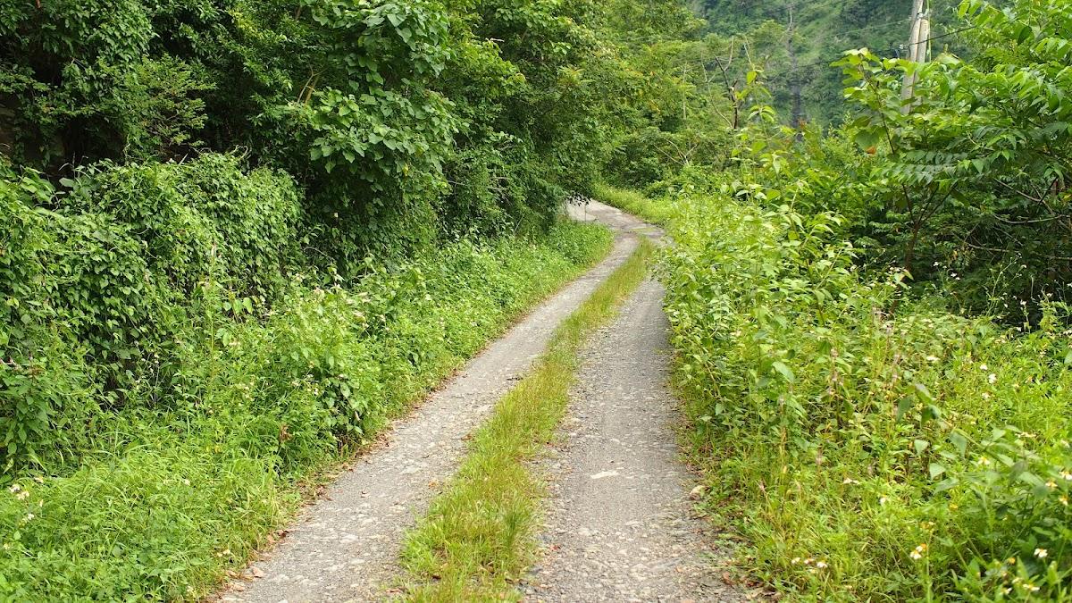 六龜|扇平林道