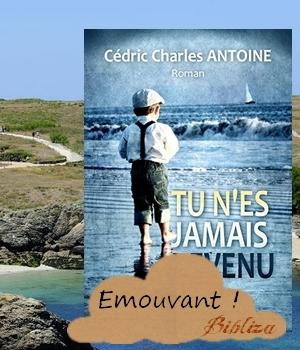 Tu n'es jamais revenu Cédric Charles Antoine Lordkarsen avis critique chronique blog Belle-Ile Longue-sur-mer Bayeux secret de famille