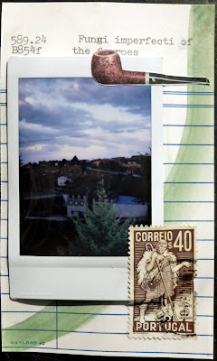Collage postage stamp polaroid library card