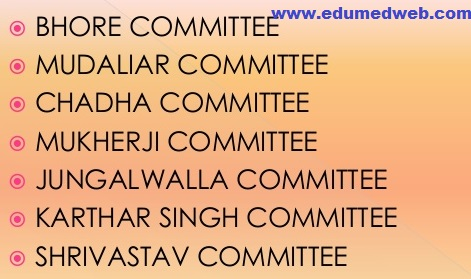 health-planning-committees