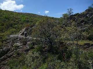Camino cerca del barranco de Majada