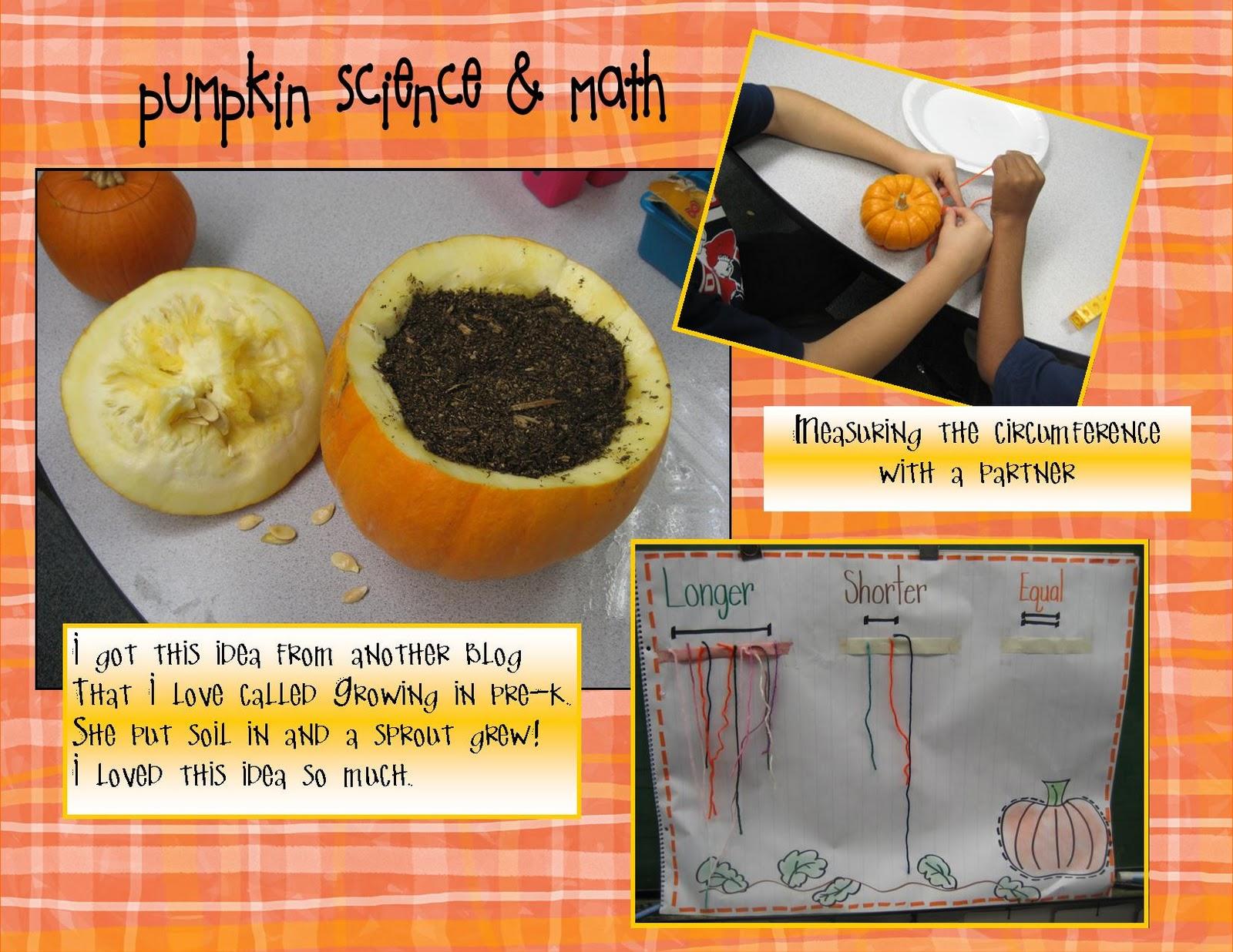 Kindergarten Crayons Pumpkins Are Not Predictable In