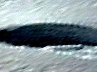 UFO Terlihat Di Antartika, Benarkah?