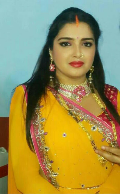 Amrapali Dubey Best Actress Award in Bhojpuri Film Award 2016