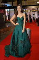 Raashi Khanna in Dark Green Sleeveless Strapless Deep neck Gown at 64th Jio Filmfare Awards South ~  Exclusive 155.JPG