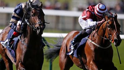 Lingfield Horse Racing