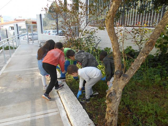 Εβδομάδα εθελοντισμού στο 6ο Δημοτικό Σχολείο Ναυπλίου με φυτεύσεις και τρόφιμα στο συσσίτιο Ευαγγελίστριας