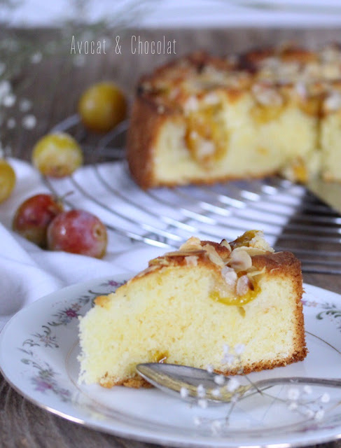 """alt=""""part de gâteau aux mirabelles sur une assiette blanche fleurie et quelques mirabelles en décor"""""""