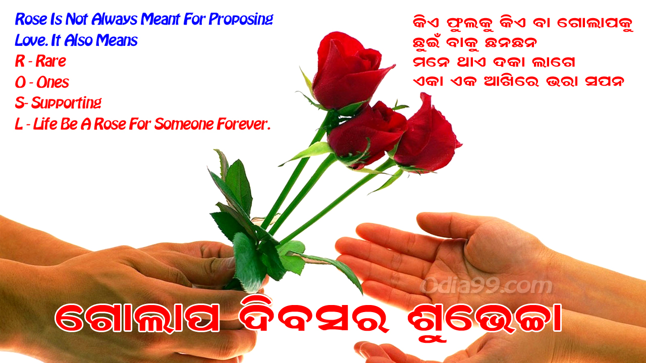 Rose Day 2019 Odia Sms Wishes Status Images Beautiful Roseday