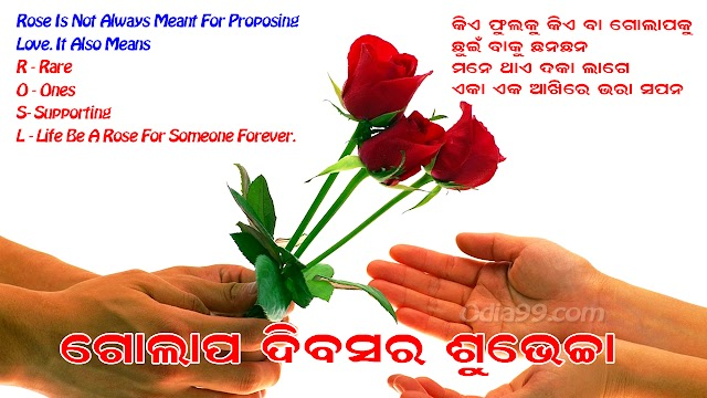 Rose Day 2019 Odia SMS, Wishes Status Images Beautiful Roseday Shayari for Lover