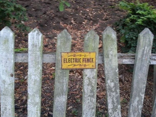 broma de cerca electrica