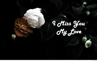 i miss you my love with white & brown rose flower pic