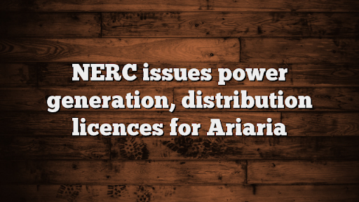 NERC issues power generation, distribution licences for Ariaria