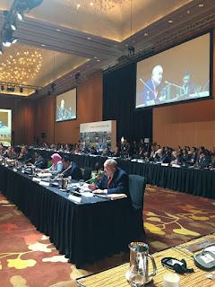 Gubernur Sumsel Berbagi Pengalaman pada World Cities Summit Mayors Forum 2016 Singapore