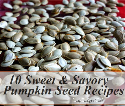 10 sweet and savory roasted pumpkin seed recipes
