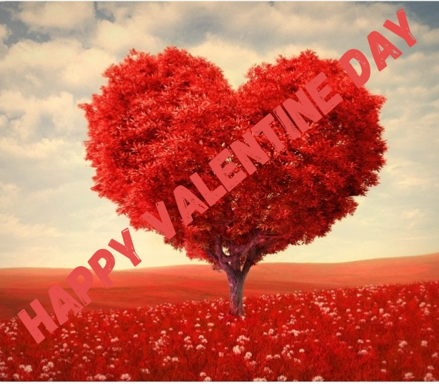 What-is-valentine-day