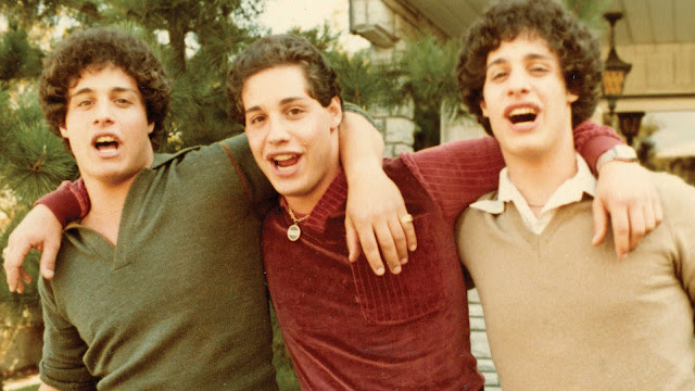Three Identical Strangers : NZIFF Review