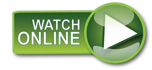 Regarder Der letzte Auftrag En ligne Streaming