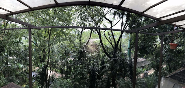 kl-bird-park-view