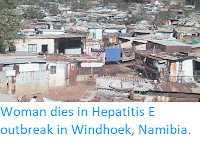 http://sciencythoughts.blogspot.com/2017/12/woman-dies-in-hepatitis-e-outbreak-in.html