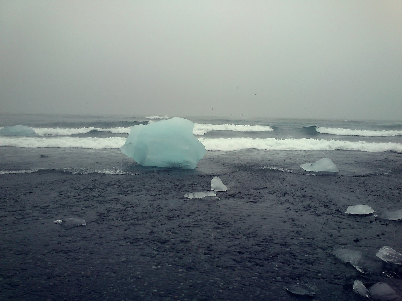 plaża przy Jökulsárlón, czarna plaża, islandzka plaża, Islandia, atrakcje Islandii