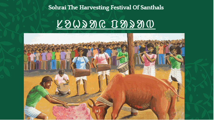 Sohrai The Harvesting Festival Santali Portrait