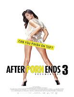 Poster de After Porn End 3