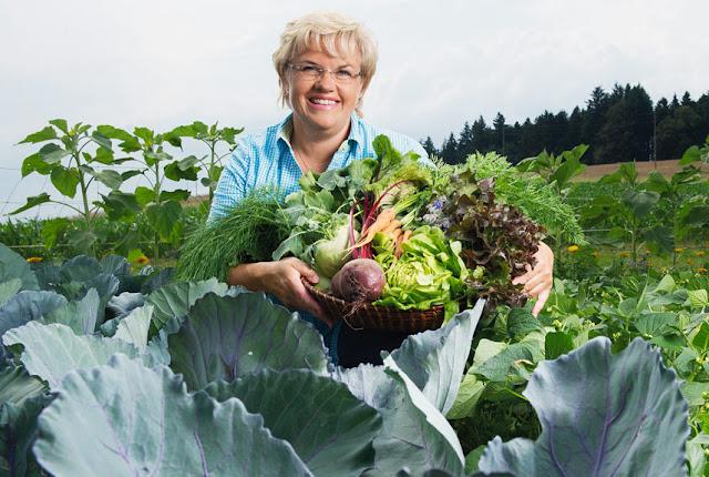Frisch, saisonal, regional – und in Bioqualität