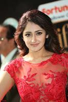 Saisha looks Glamorous Super cute in Transparent Red Gown at IIFA Utsavam Awards 003.JPG