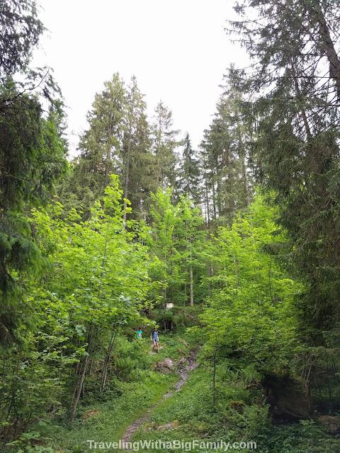 Hiking the woods behind the Ende der Welt restaurant in Engelberg-Horbis