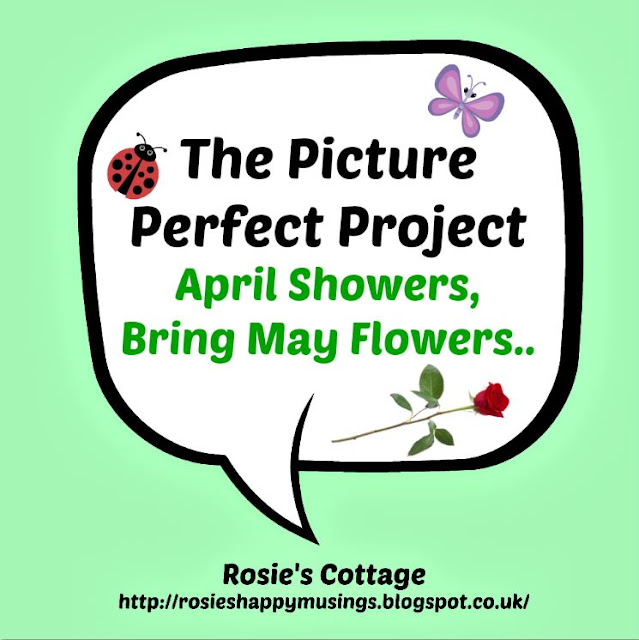 The Picture Perfect Project 2016 April Showers Bring May Flowers