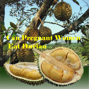 Pregnant Women Eat Durian