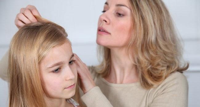 Tutorial Sehat Mencegah Penyebaran Kutu Rambut