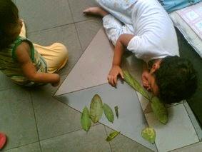 http://www.kekenaima.com/2008/08/mengamati-daun.html