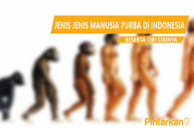 Jenis Jenis Manusia Purba di Indonesia