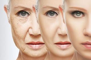 Manfaat Kunir Putih untuk Kesehatan, Kecantikan Wajah, Kesuburan Pria yang Jarang Diketahui